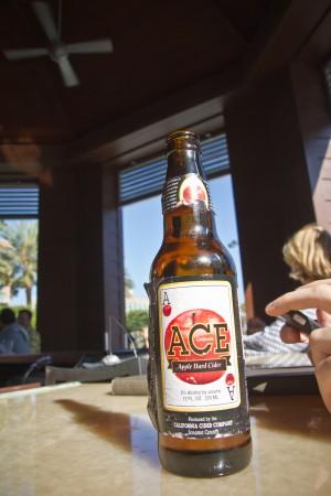 Ace Apple Hard Cider