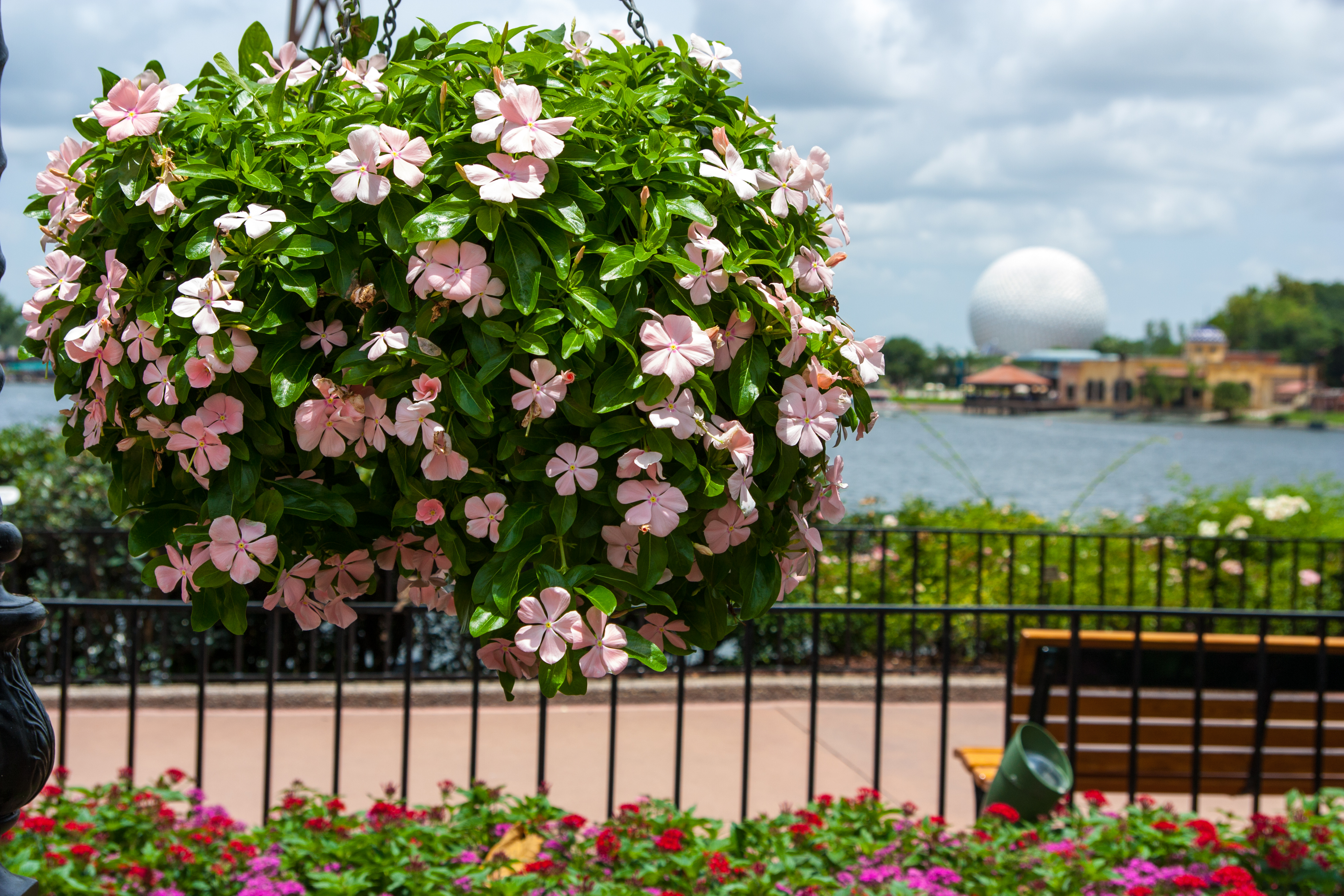 Epcot flower and garden festival 2014 the beer beers and ears for Disney flower and garden festival