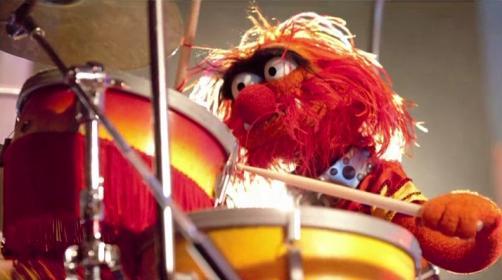 Animal_drums